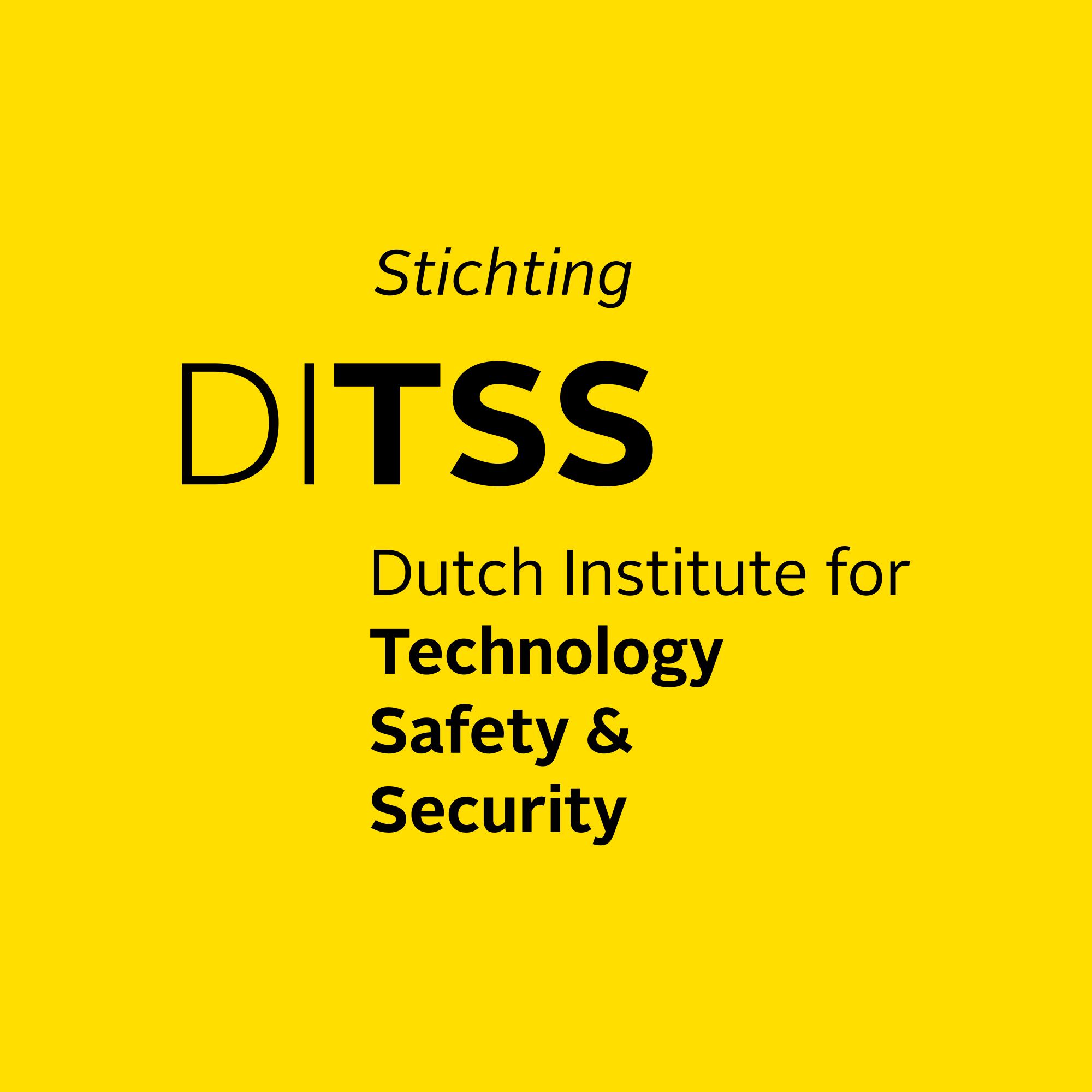 Bezoek website van de Stichting Dutch Institute for Technology, Safety & Security