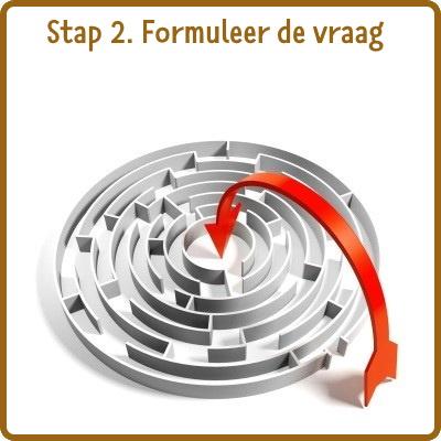stap 2: vraag formuleren